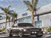 cars buildings offices architecture automobiles vehicles palm trees outdoors outside