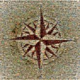 compass rose maps directions symbols icons graphics shapes