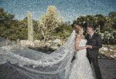 people faces wedding couple love distance distant