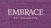 pets insurance text words letters logos company graphics animals
