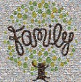 family anniversary trees graphics illustrations shapes cursive script community together words text letters roots love