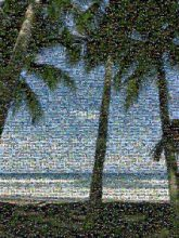beach silhouette vacation ocean costa rica people shade shadows travel