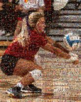 volleyball sports athletes athletics girl woman teams games
