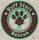 pet dog rescue shelter animals pets logos graphics words text font symbols icons