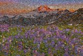 meadows flowers mountains sky sunset nature outdoors scenery