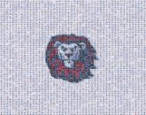 mascots teams community unity pride lions icons symbols graphics portraits