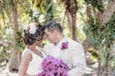 outdoors weddings scenic people faces portraits formal marriage married couples love flowers brides grooms husband wife