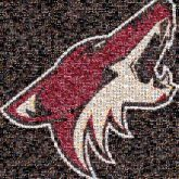 arizona coyotes hockey sports logos mascots animals companies
