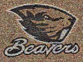 animal sports team beavers graphic logo icon mascot