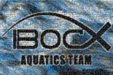 aquatics athletes sports swimming text words letters symbols graphics logos teams athletics