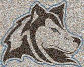 schools mascots logos wolves wolf