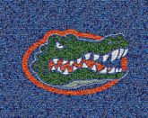 florida gators animals mascots symbols icons pride logos graphics sports teams