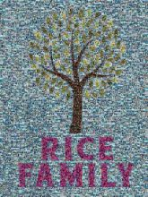family trees illustrations graphics lineage text words letters bold love leaves