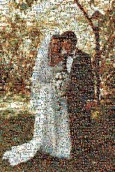 wedding distance brides grooms gowns veils tuxedos couples love marriage portraits figures people