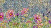 Flower Desktop Wallpaper Flowering plant Petal Garden cosmos Wildflower Meadow Watercolor paint Sky