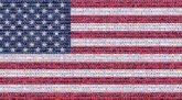 Florida Flag Flag of the united states Flag Day (USA) Line Veterans day Pattern Independence day