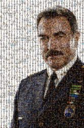 Tom Selleck Blue Bloods Actor Official Military rank Military officer Admiral Military person White-collar worker Gesture Spokesperson