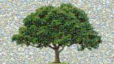 Portable Network Graphics Clip art Tree Transparency Image Banyan Plant Woody plant Green Leaf Flowering plant Plane Grass Arbor day