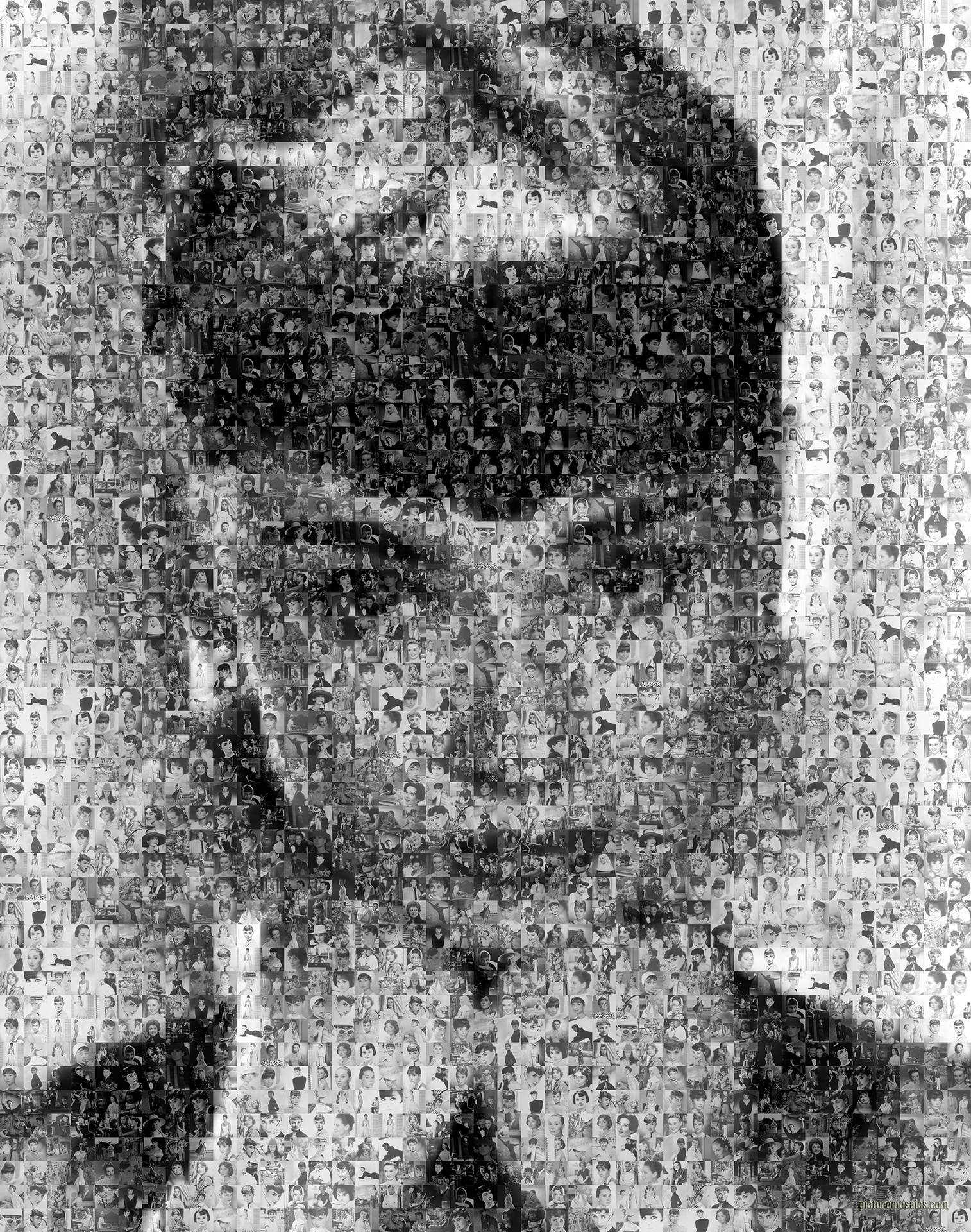 photo mosaic created using 186 images from Audrey's films and photos