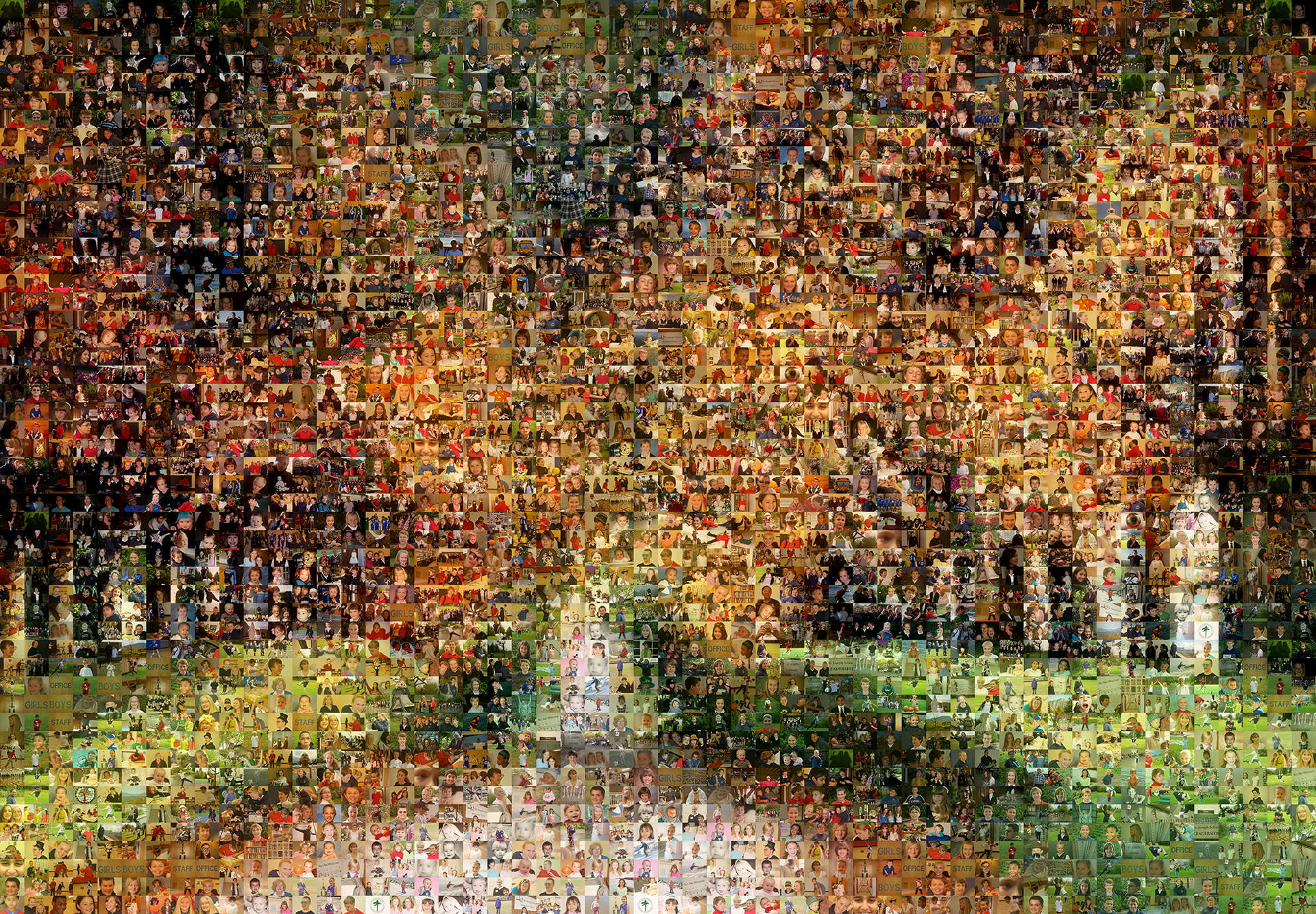 photo mosaic a beautiful path of fall leaves made using 1058