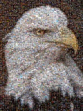 picture mosaics designer photo mosaic gallery