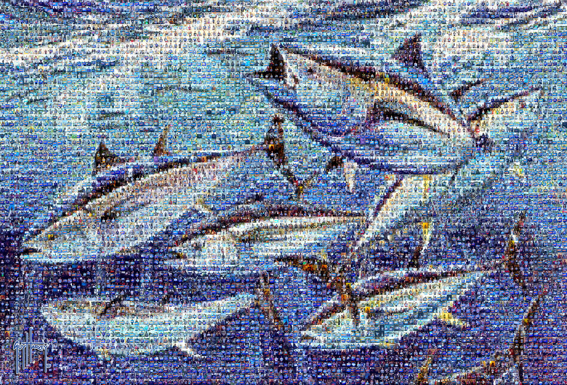 photo mosaic created using over 7,000 images of Bluefin supporters