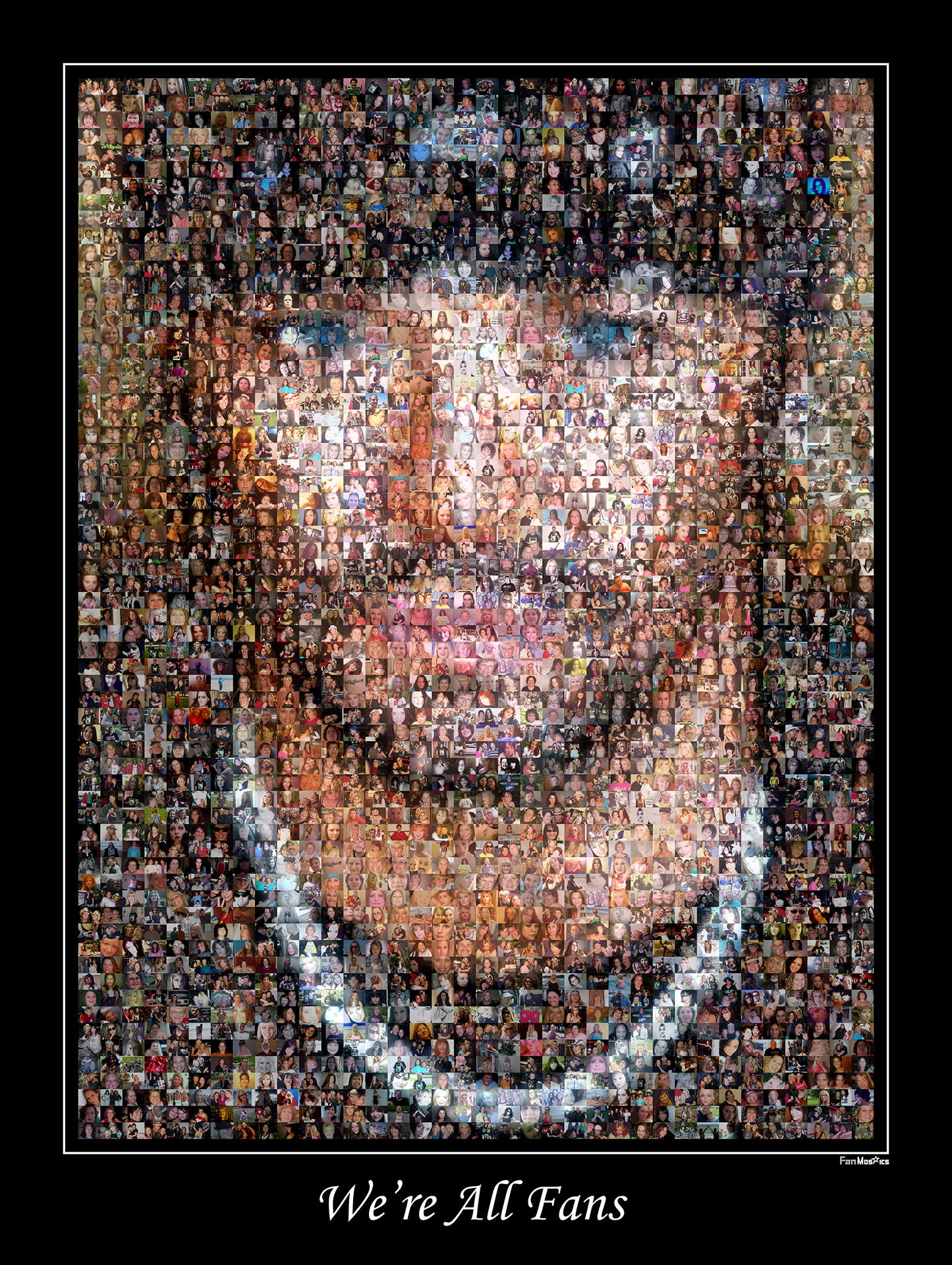 photo mosaic created using over 1,800 fan submitted photos