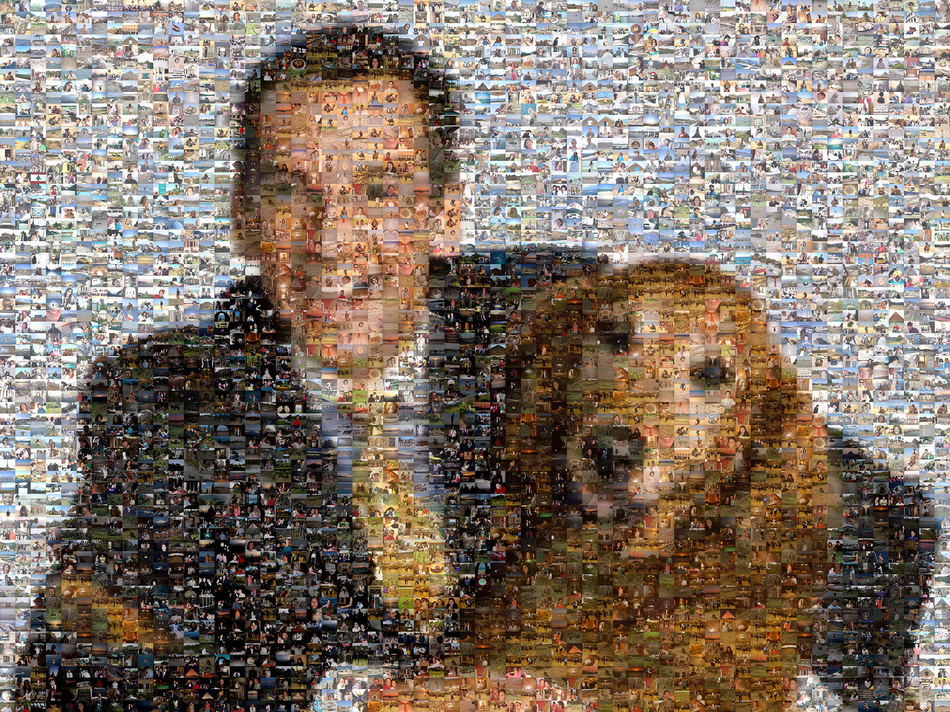 photo mosaic Man's best friend using over 3000 photos from his travels