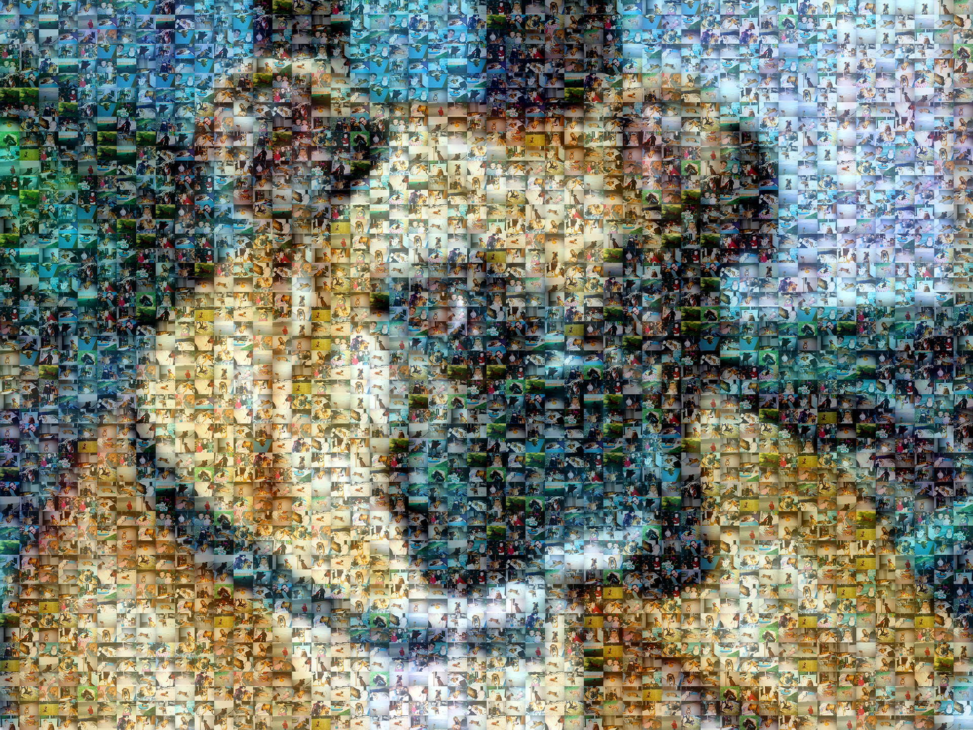 photo mosaic created using only 87 customer selected photos