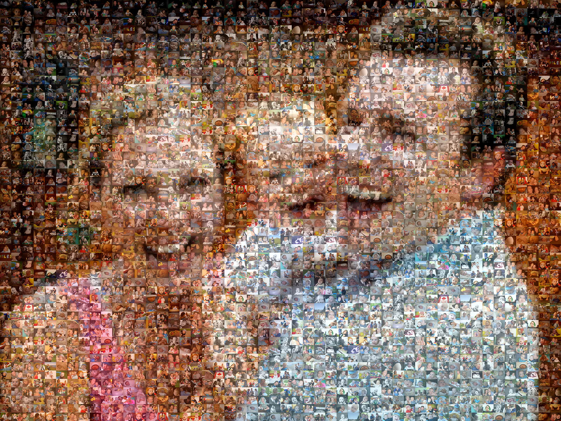 photo mosaic created using 582 family photos