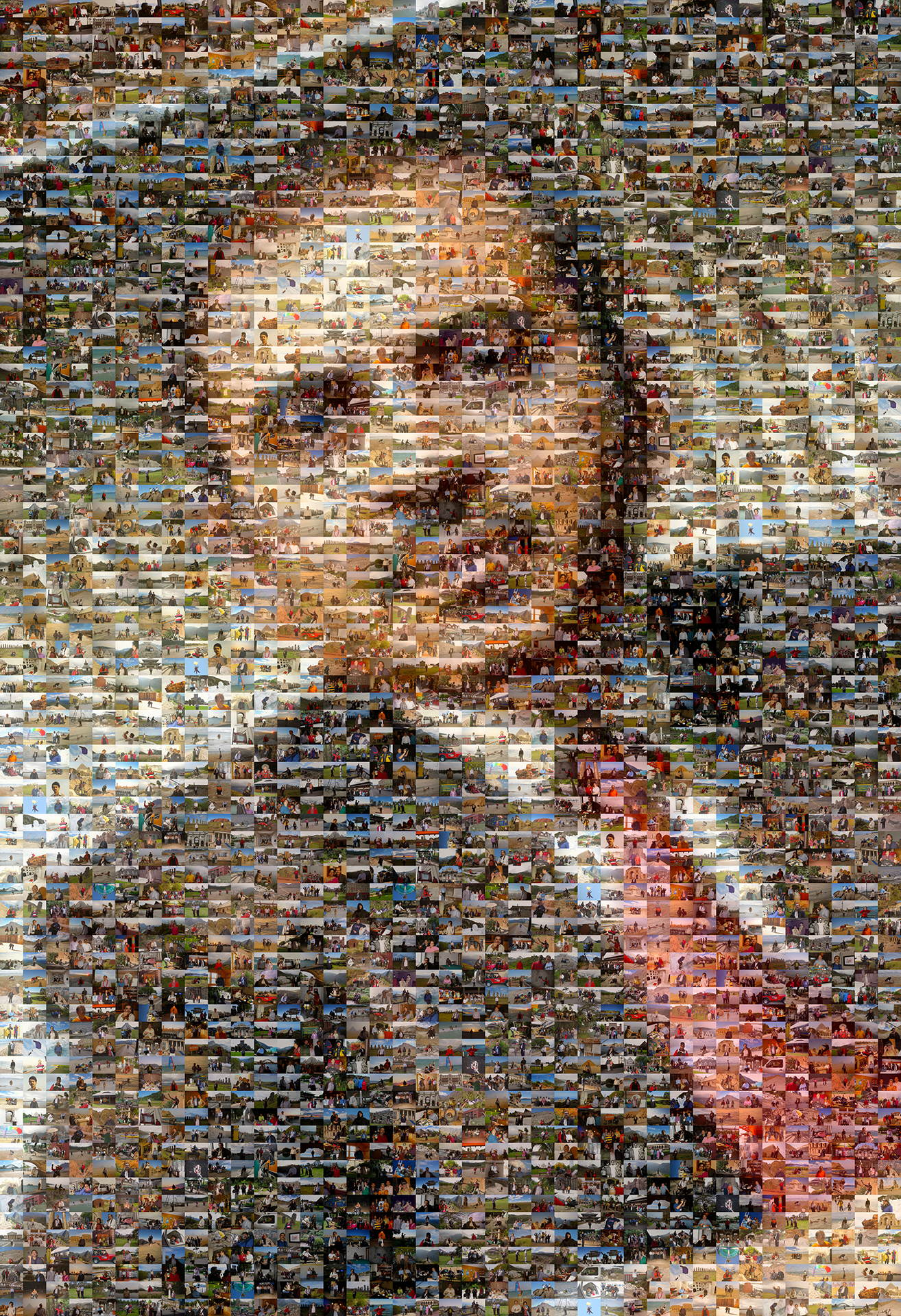 photo mosaic created using 550 Lifetime photos