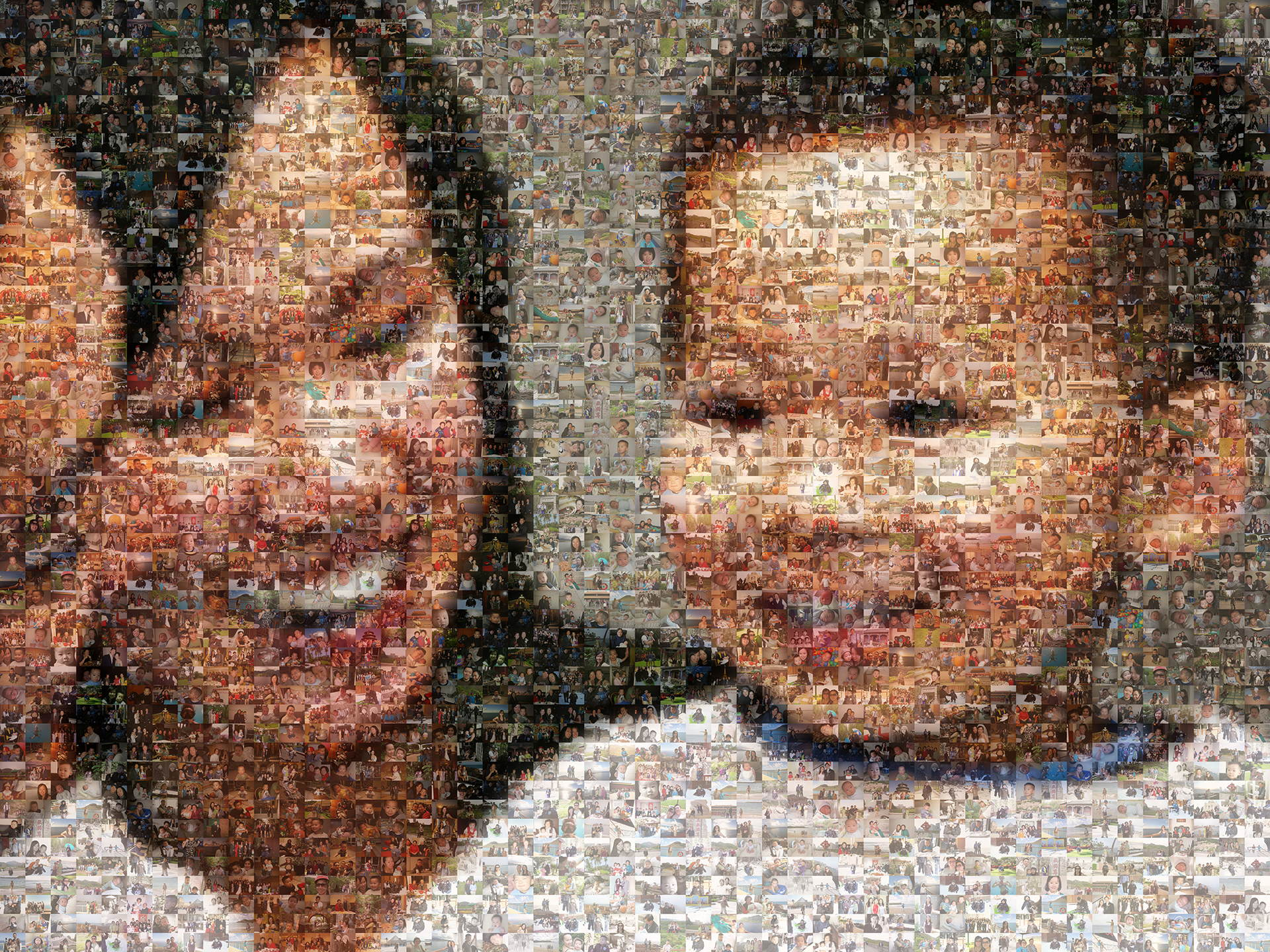 photo mosaic created using 690 family photos
