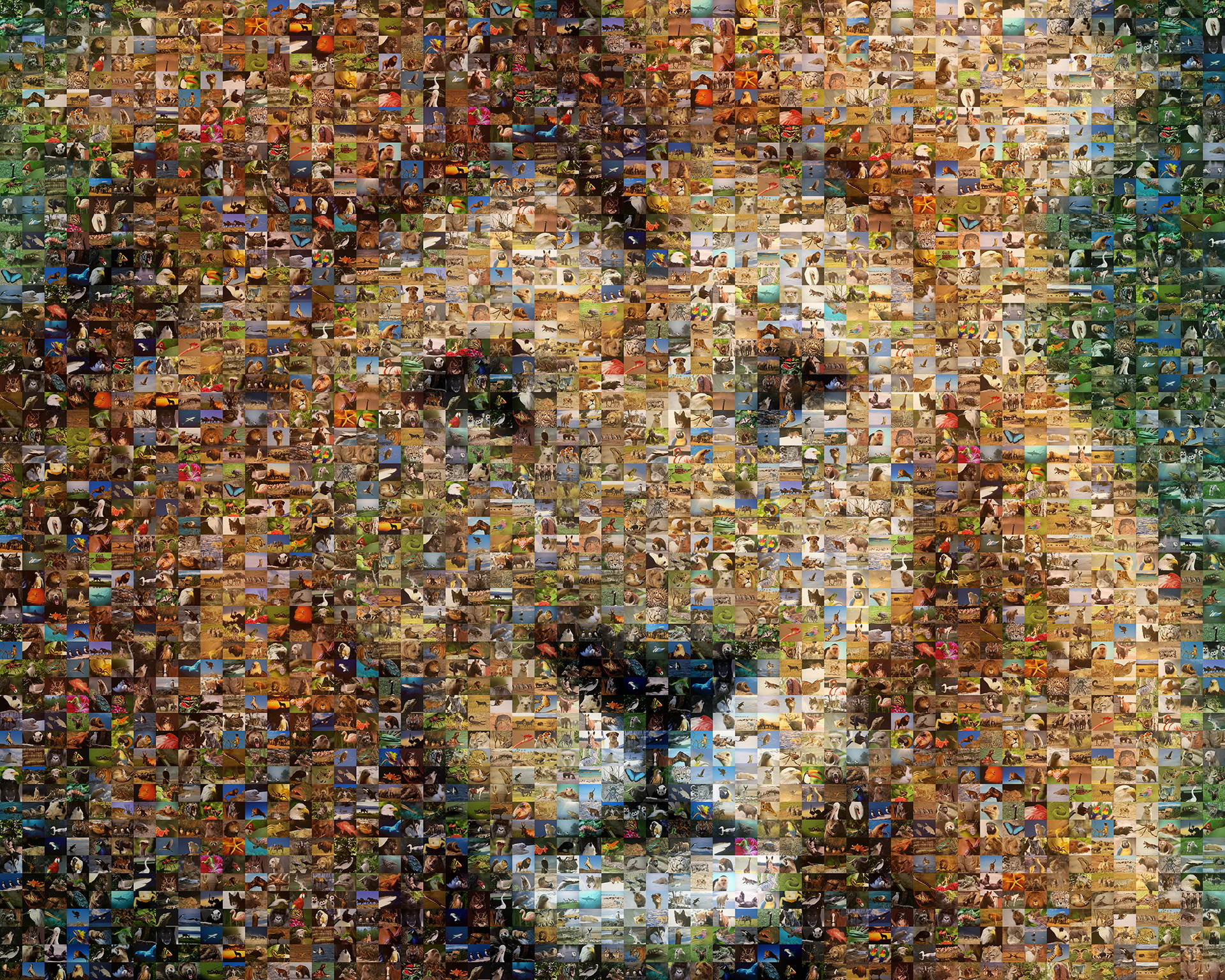 photo mosaic created using over 600 unique photos of animals and wildlife