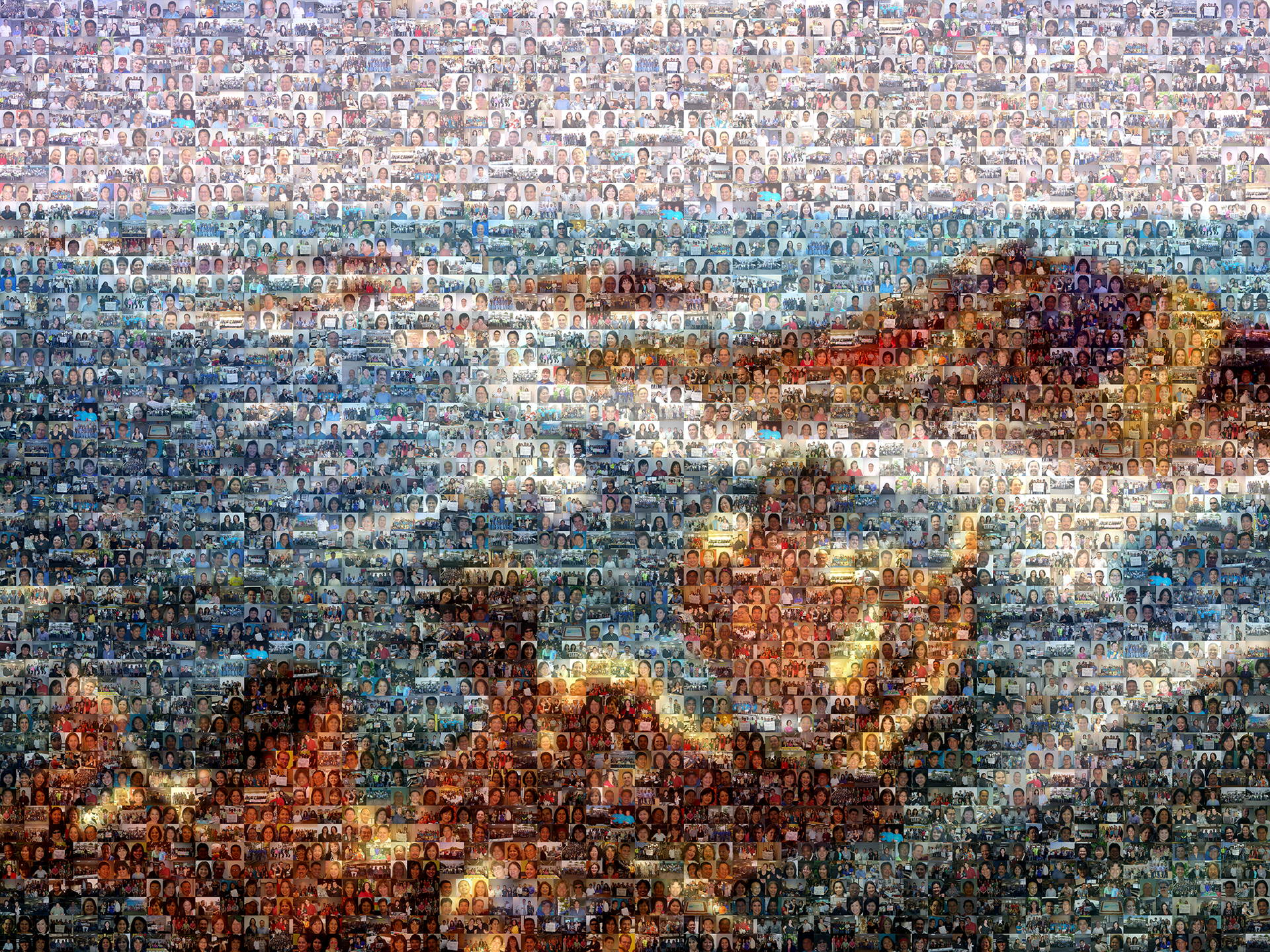 photo mosaic This mural was created using two different cell orientations totaling approximately 900 unique photos