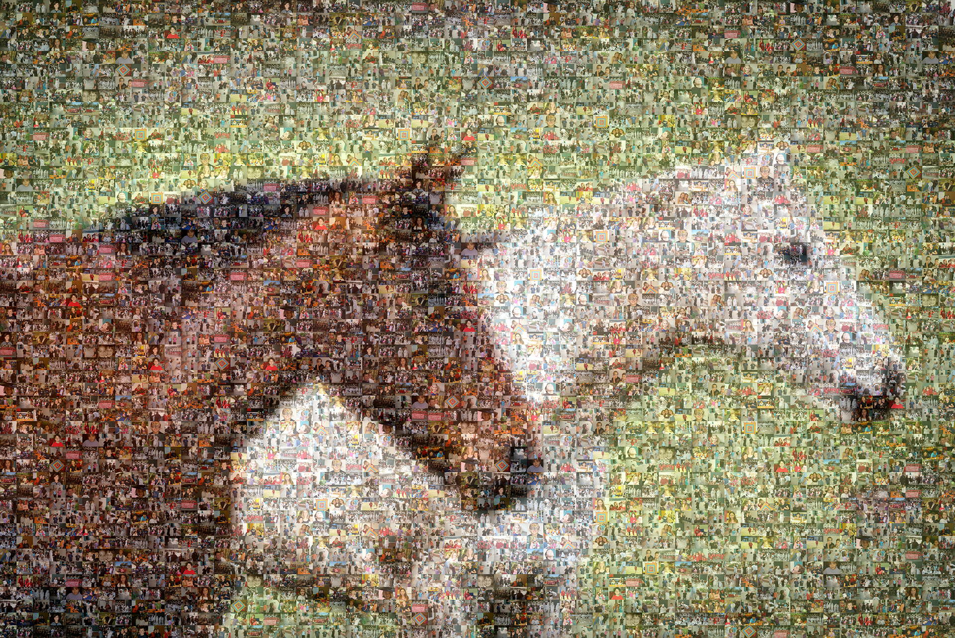 photo mosaic created using 246 student portraits