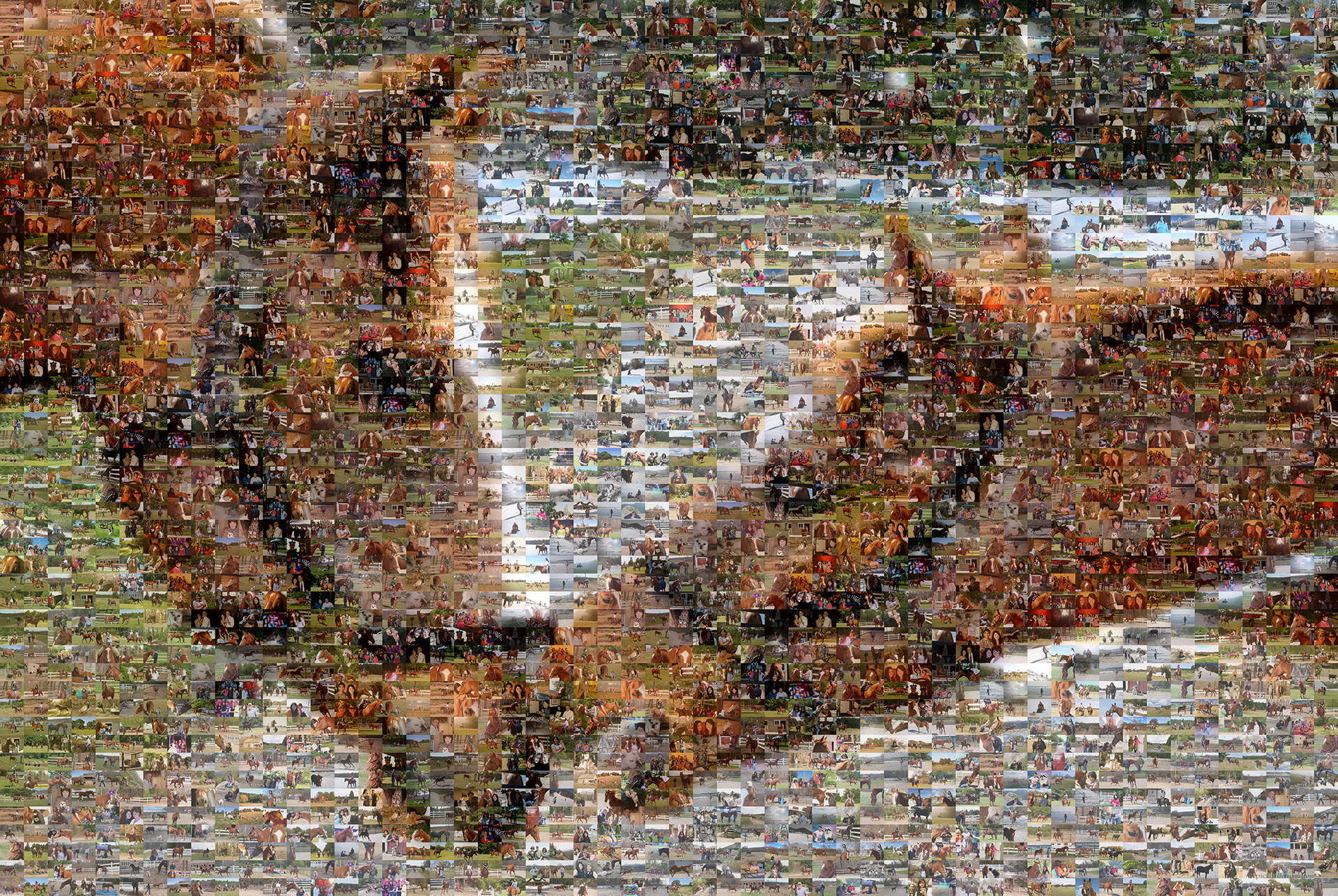 photo mosaic created using 652 photos