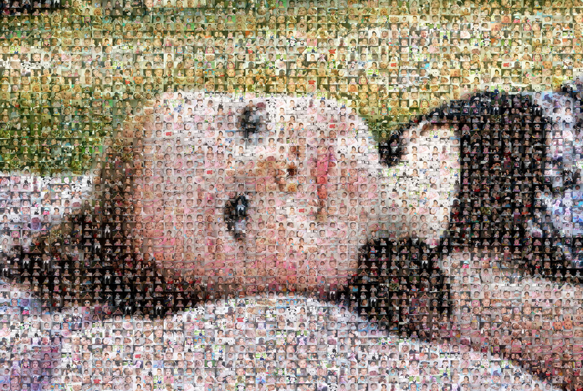 photo mosaic created using 820 photos of this beautiful baby