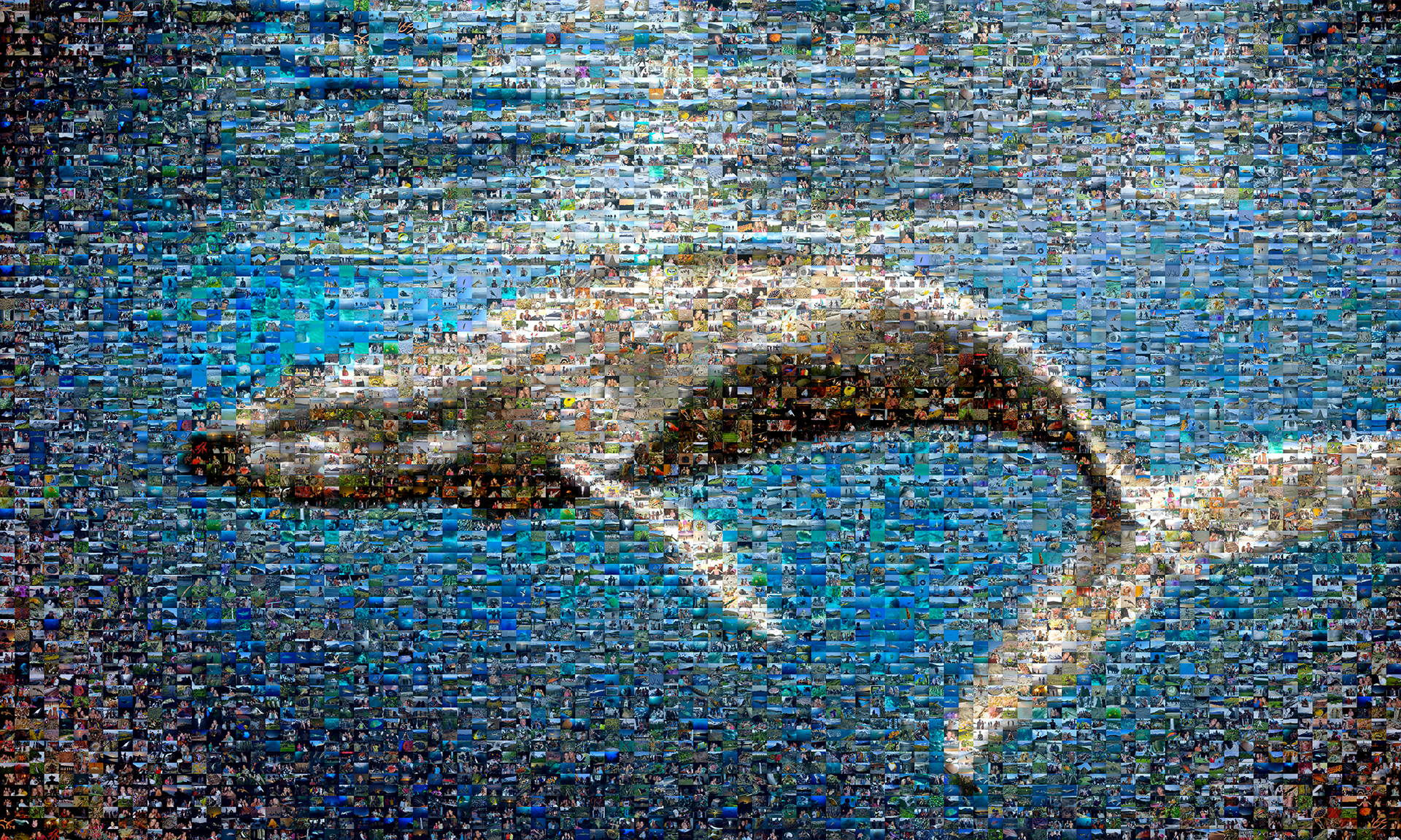 Examples Of Social Policy >> Picture Mosaics - Ocean First Photo Mosaic