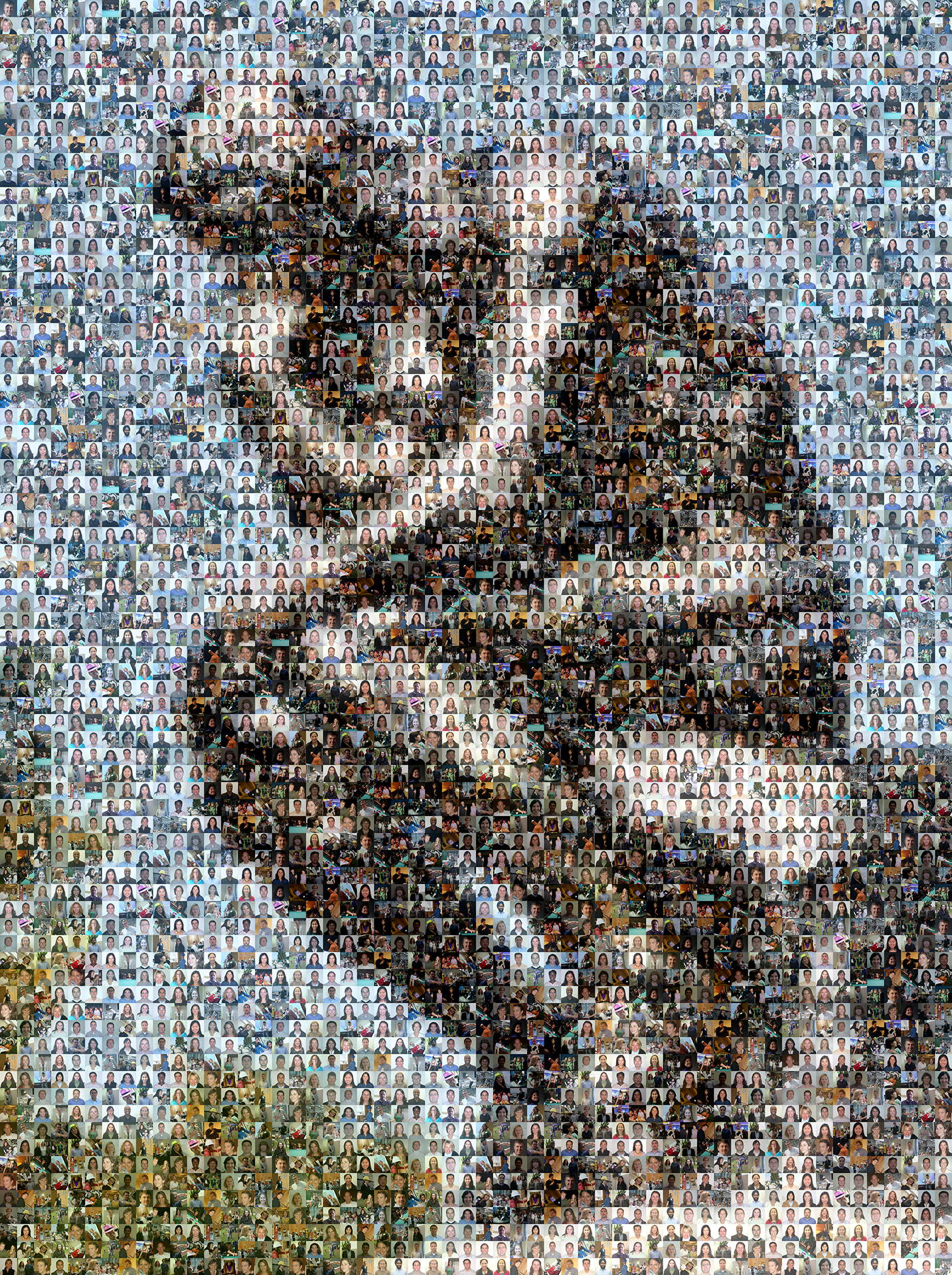 photo mosaic created using 145 employee photos