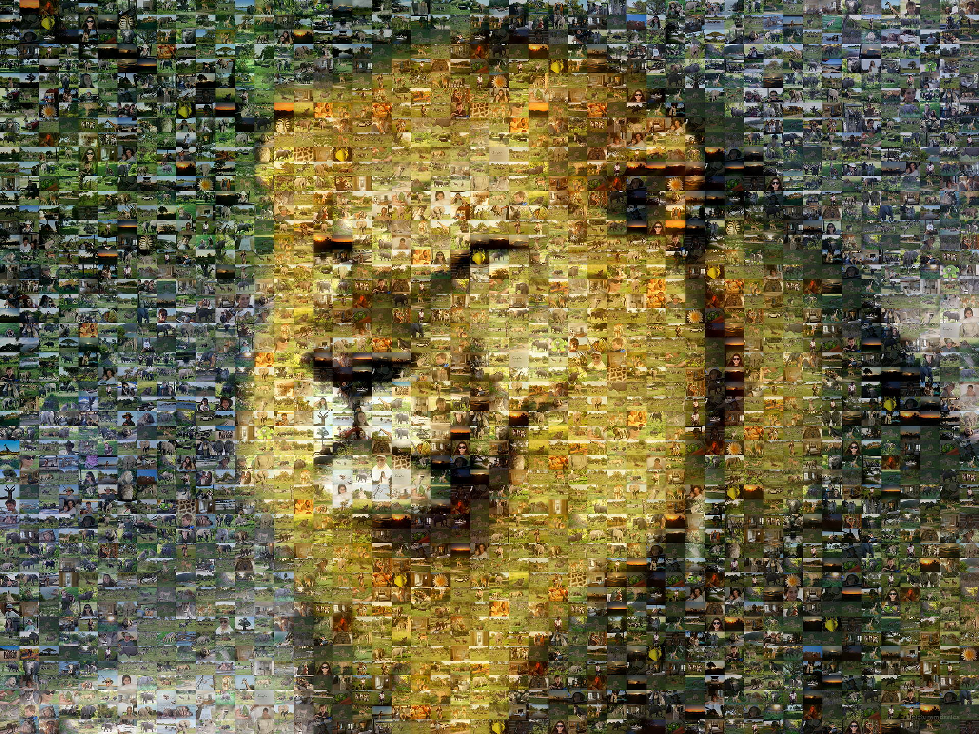 photo mosaic created using 705 photos of a family vacation