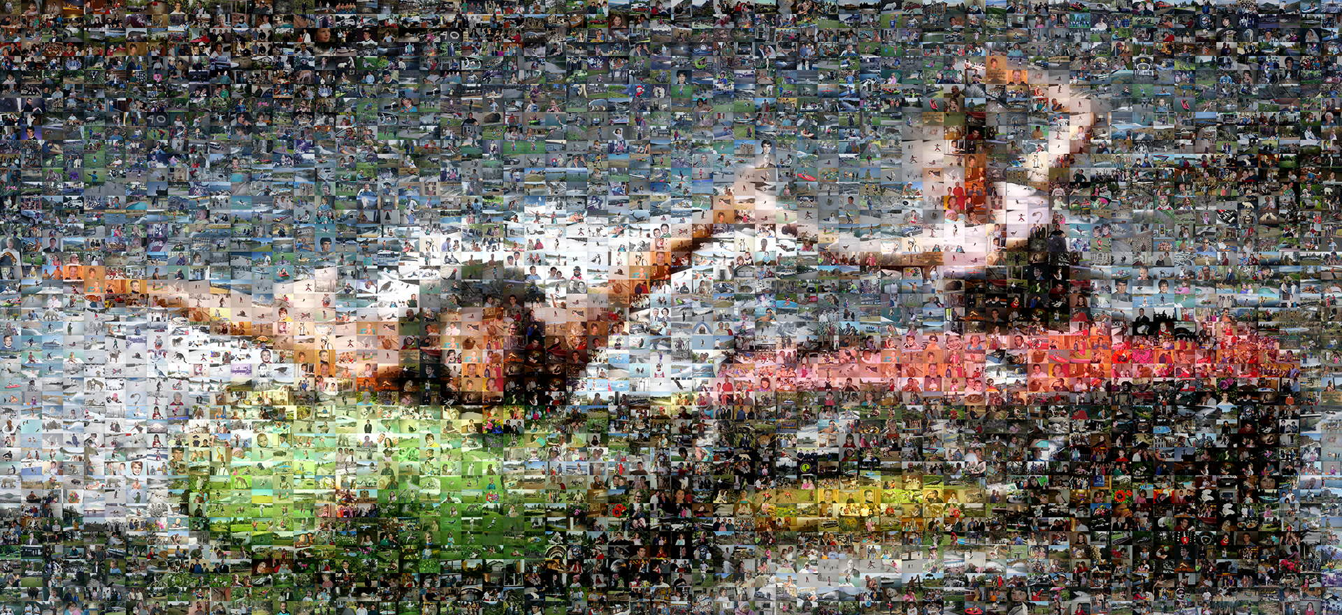 photo mosaic this action shot was captured as a mosaic using 2,773 family photos