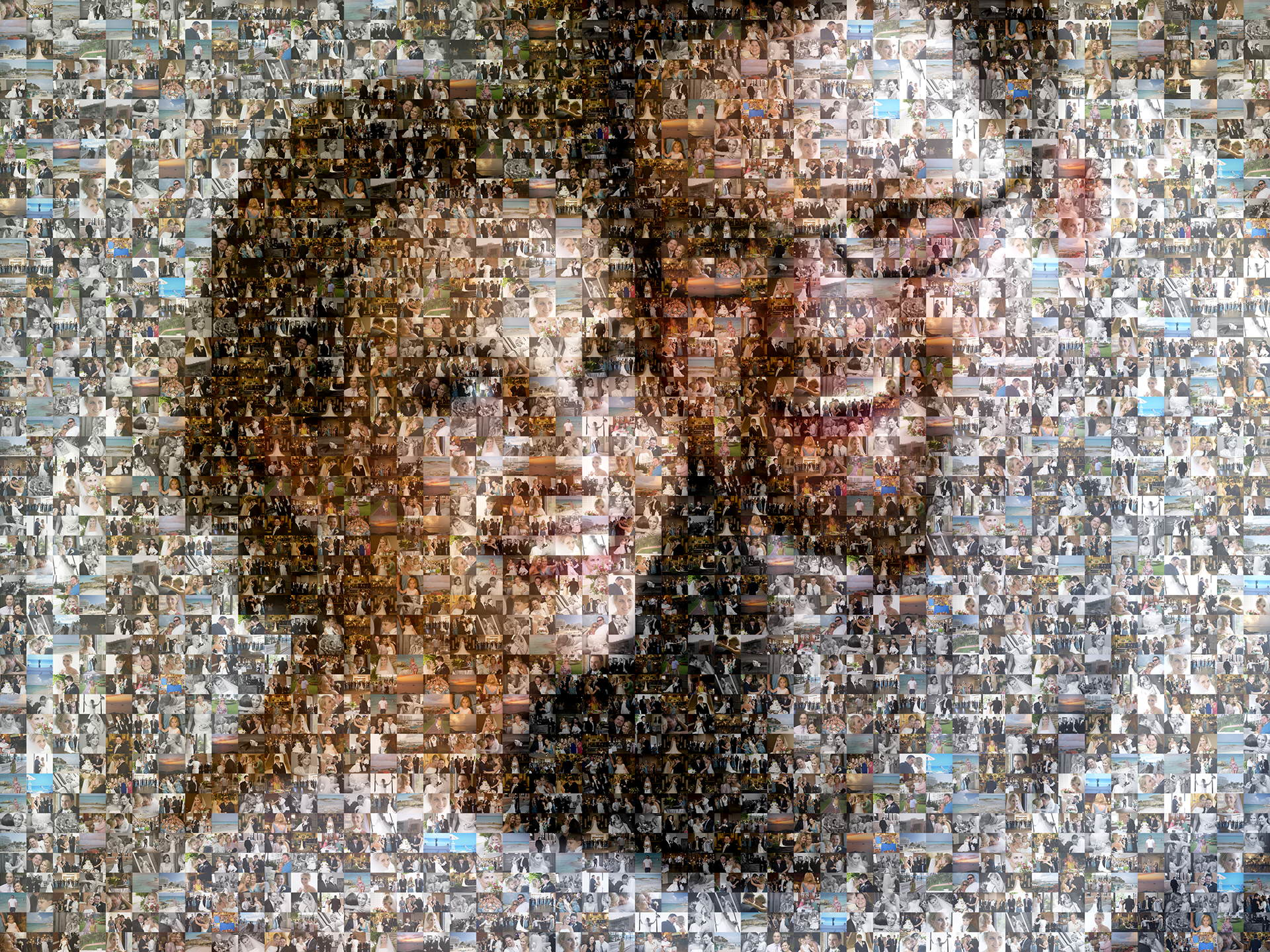 photo mosaic created using 229 wedding photos