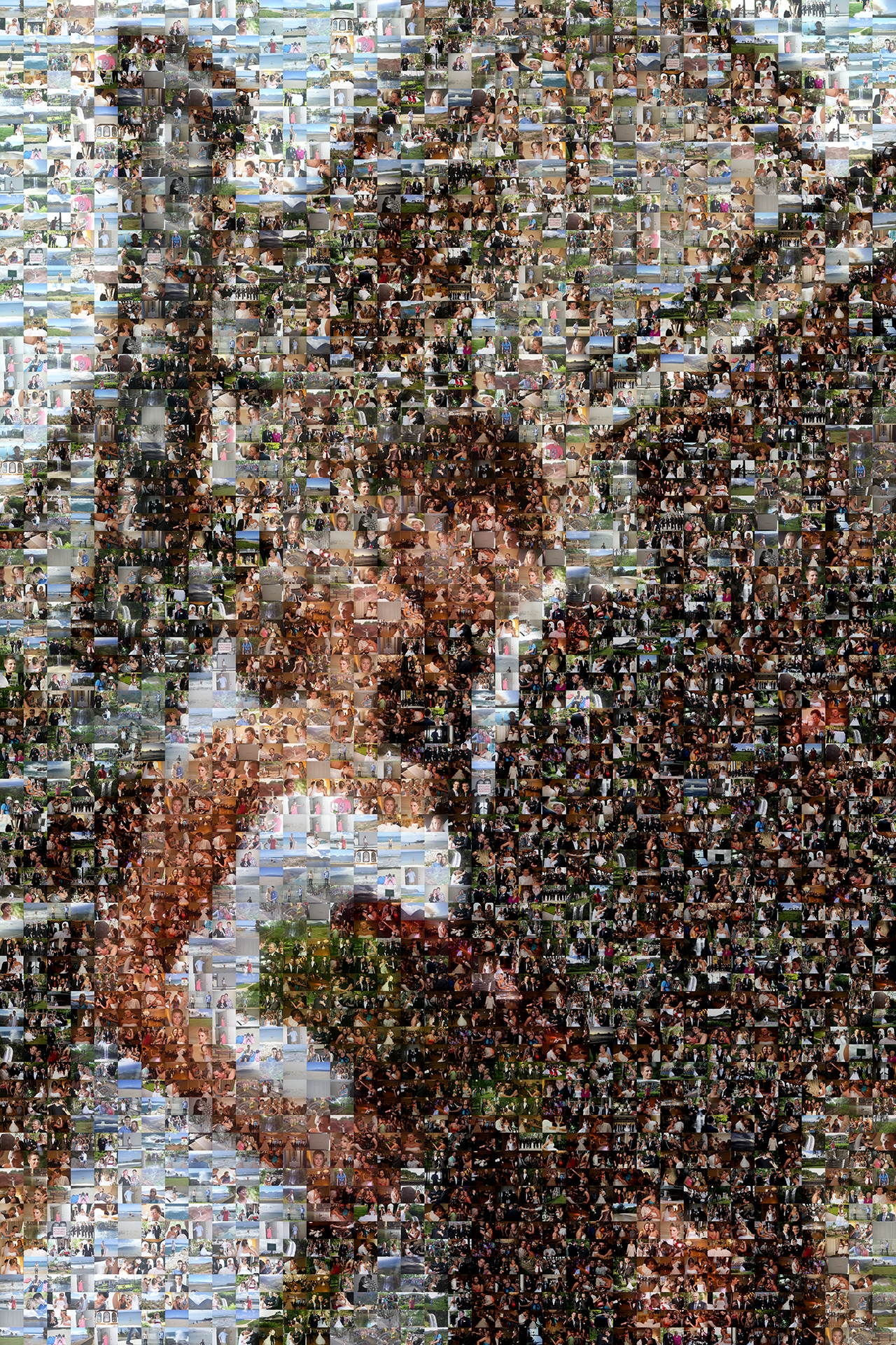 photo mosaic created using 496 photos of the happy couple